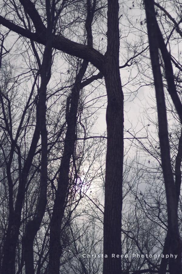 2014-11-26_0038