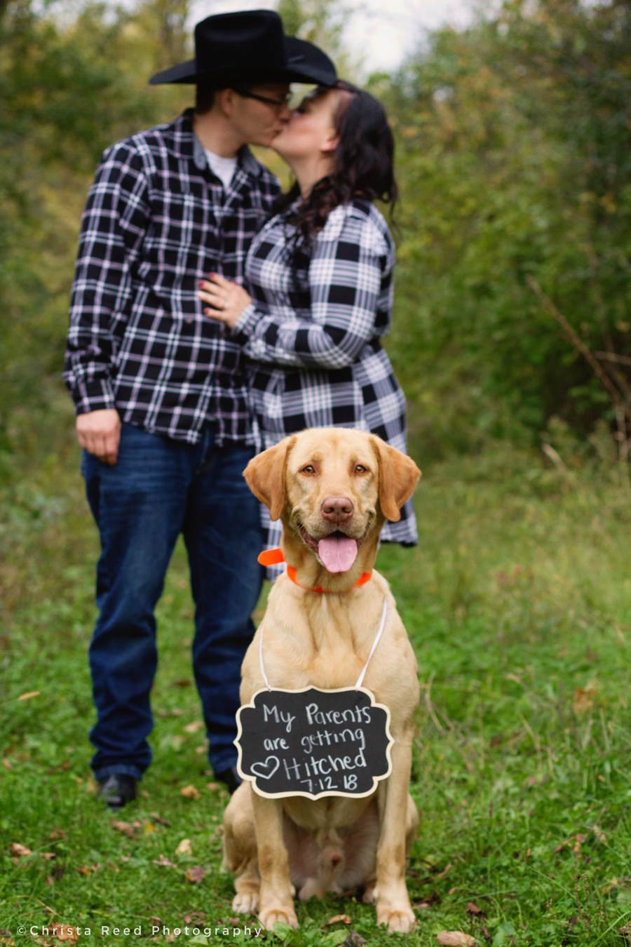 dog in engagement pictures in chaska minnesota