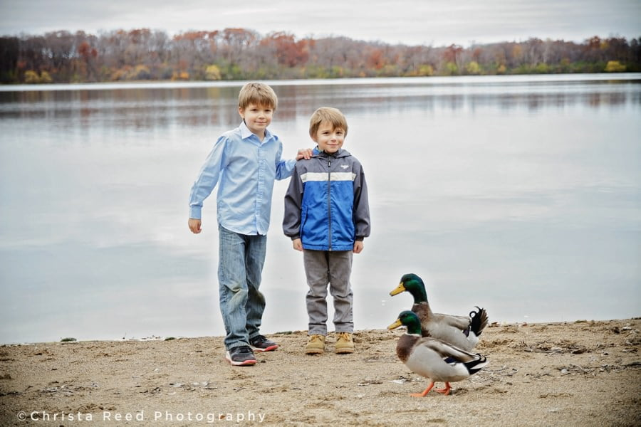 brothers on the beach with ducks at lake ann park