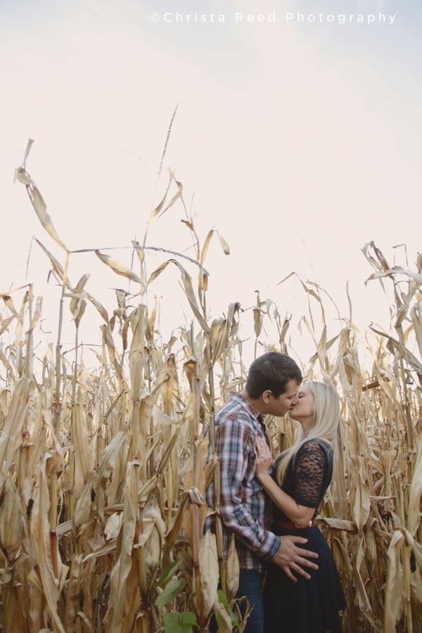 engaged couple kisses in a cornfield for their portrait